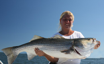 Long island sound fishing reports 2012 for Ct fish and game